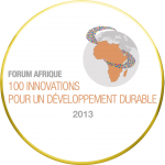 100 innovations for sustainable development   (2013)